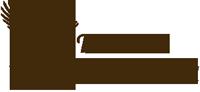 logo200_braun